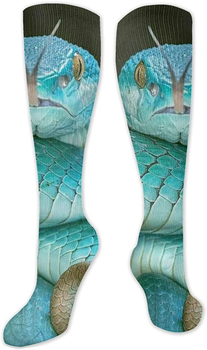 Women's Cotton Knee High Socks Mint Green Snake Fashion Socks (Women¡¯s Shoe Size 5-9)