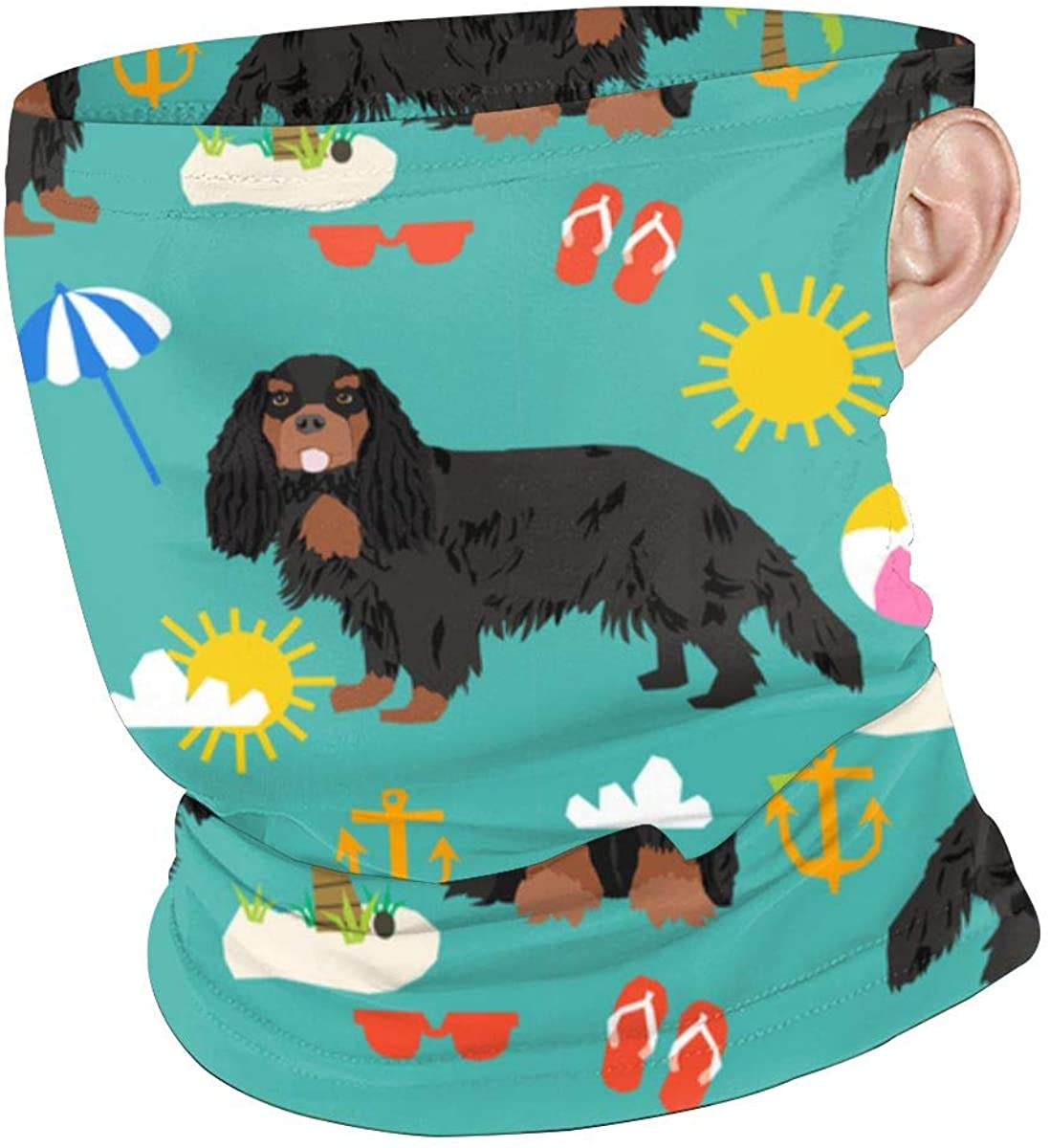 Cavalier Dog Ear-mount Bandanas Windshield For Dust, Outdoor, Sport, Hair, Neck Neck Gaiter