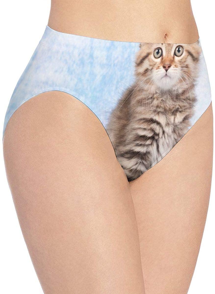 YQINING Womens Seamless Underwear Siberian Kitten Bikini Panties Stretch Briefs Laser Cut