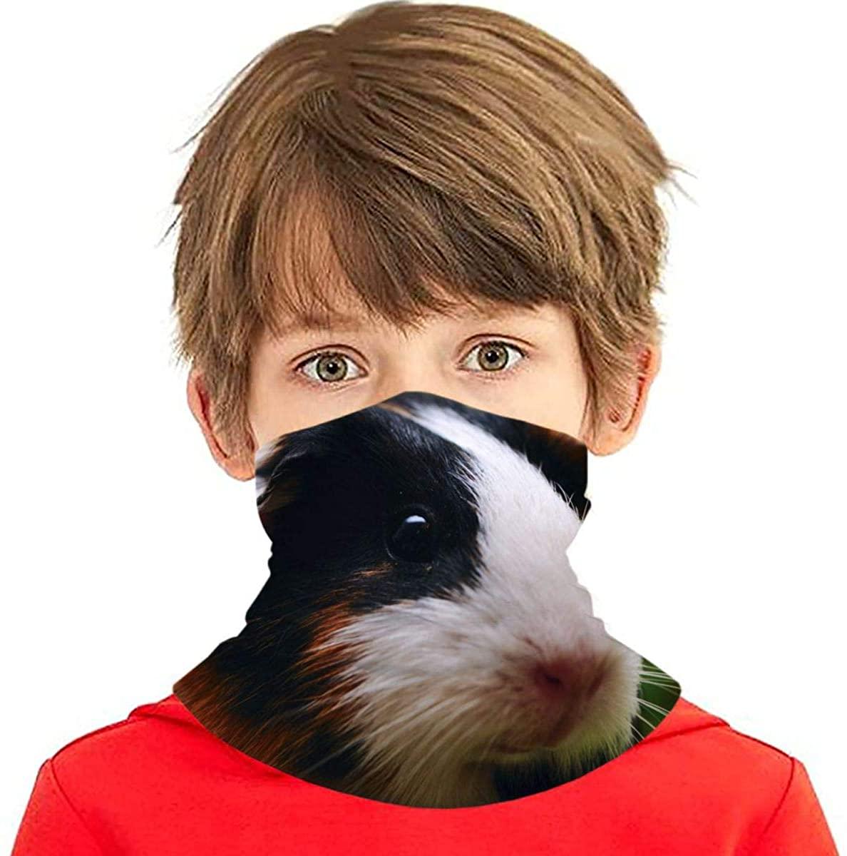 Youth Face Bandanas, Guinea Pigs Reusable Face Mask Half Face Towel Mouth Cloth Facial Scarf Variety Headscarf