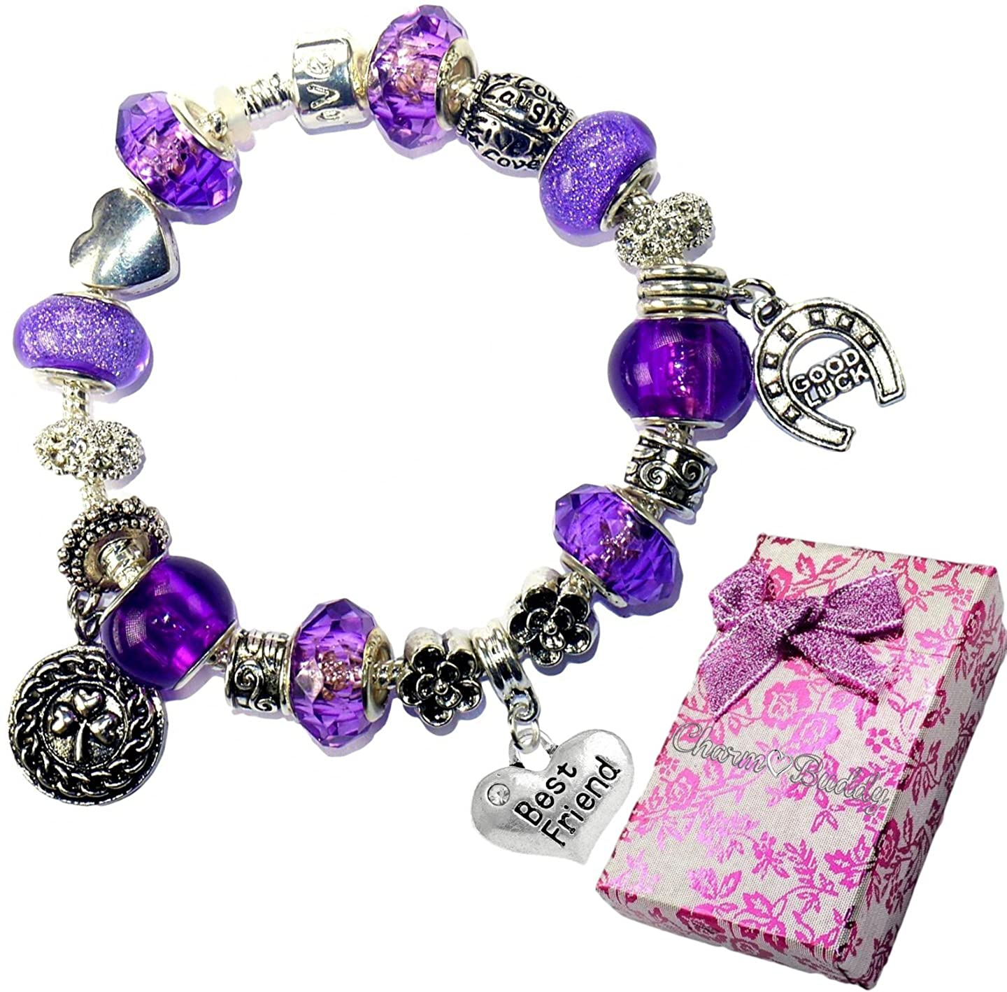 Charm Buddy Best Friend Purple Crystal Pandora Style Bracelet With Charms Gift Box