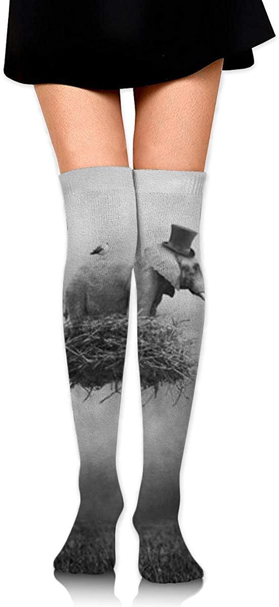 Dress Socks African Thailand Elephant Sketch Long Knee Hose Hold-Up Stockings