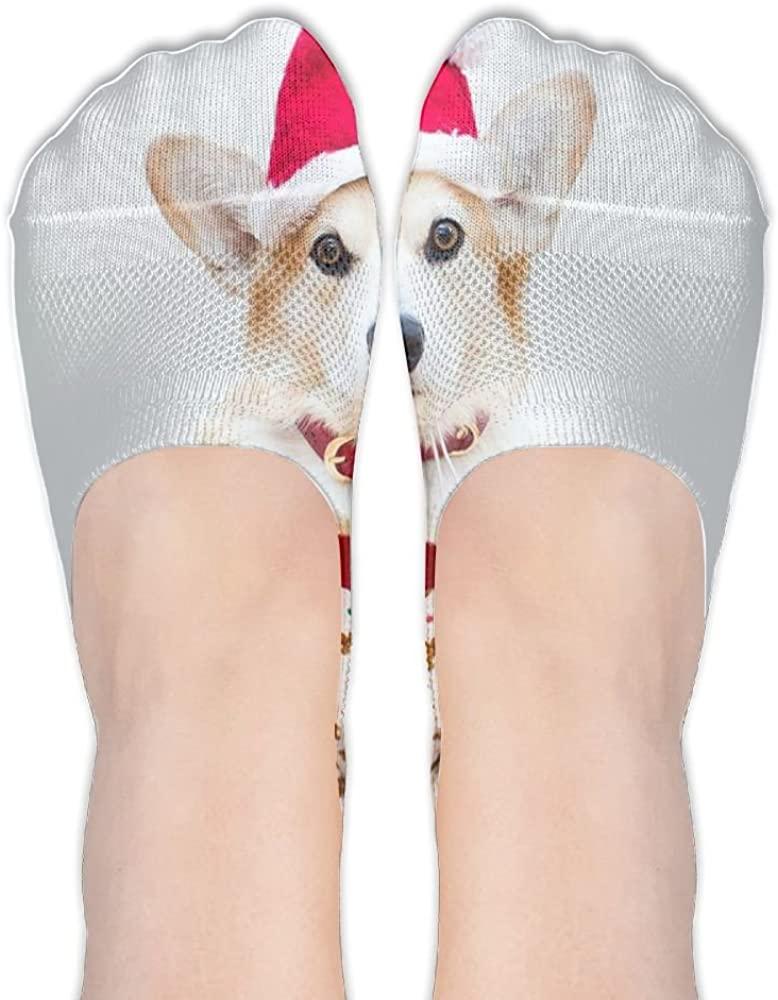 Womens Christmas Welsh Corgi Hidden Cotton Liner Socks Sports Boat Socks No Show Socks Athletic Low Stockings