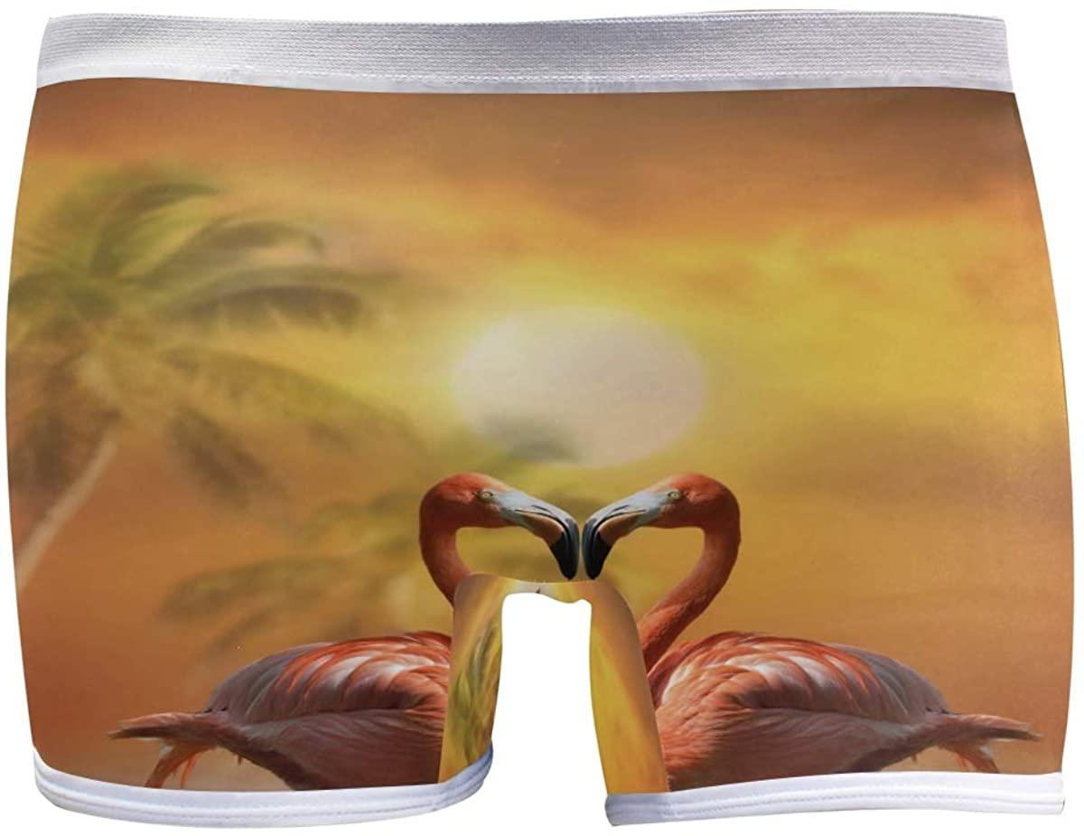 SLHFPX Womens Hipster Panties Underwear Pink Flamingos Lover Birds Dusk Ladies Seamless Boy Shorts Panty