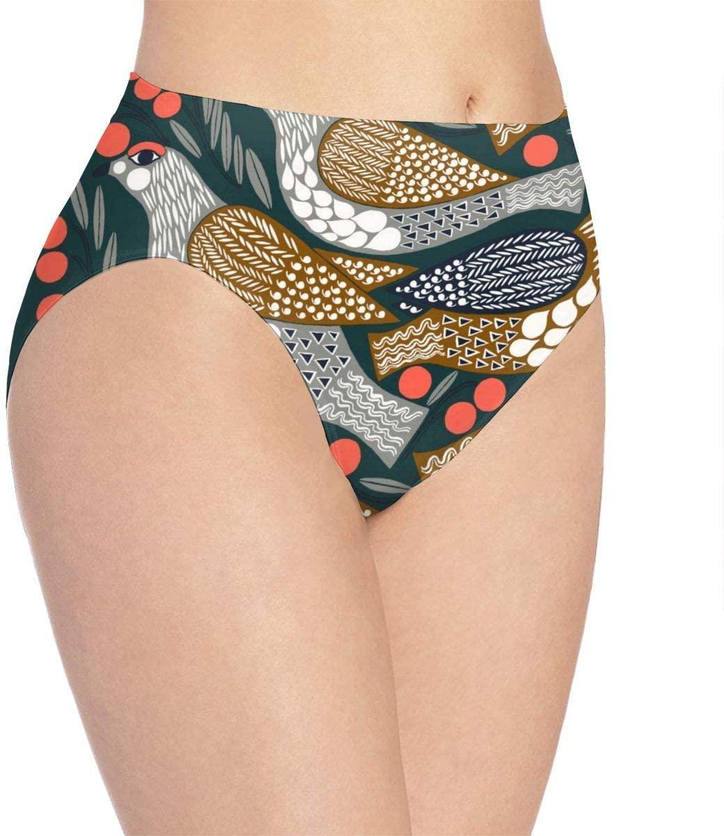 Kjaoi 3D Print Soft Womens Underwear, Retro Birds Fashion Flirty Sexy Ladys Panties Briefs