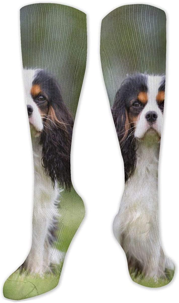 Georgian Knee High Socks Leg Warmer Dresses Long Boot Stockings For Womens Cosplay Daily Wear