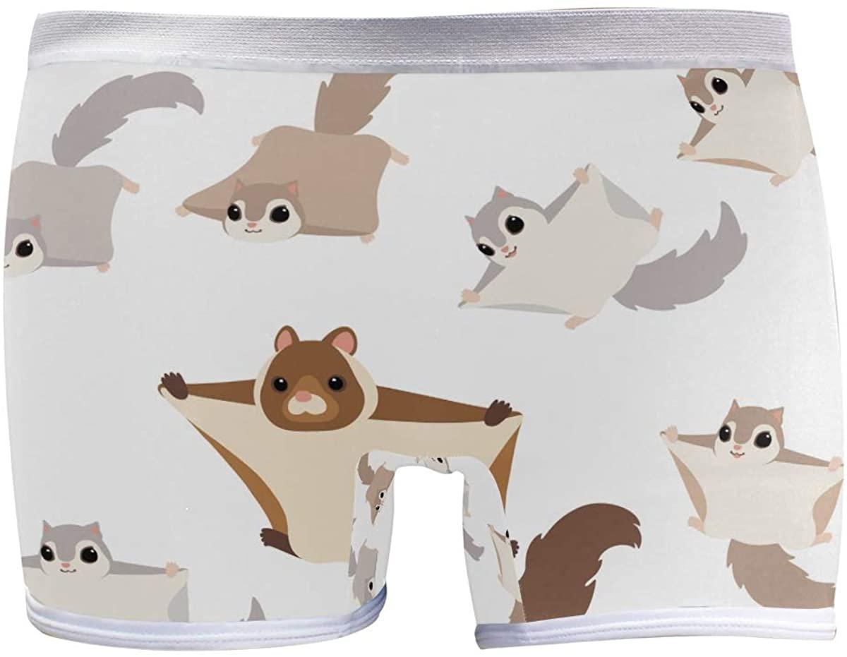 SLHFPX Womens Underwear Boxer Briefs Cartoon Bat Cute Funny Flying Squirrels Ladies Soft Boxer Briefs Panty