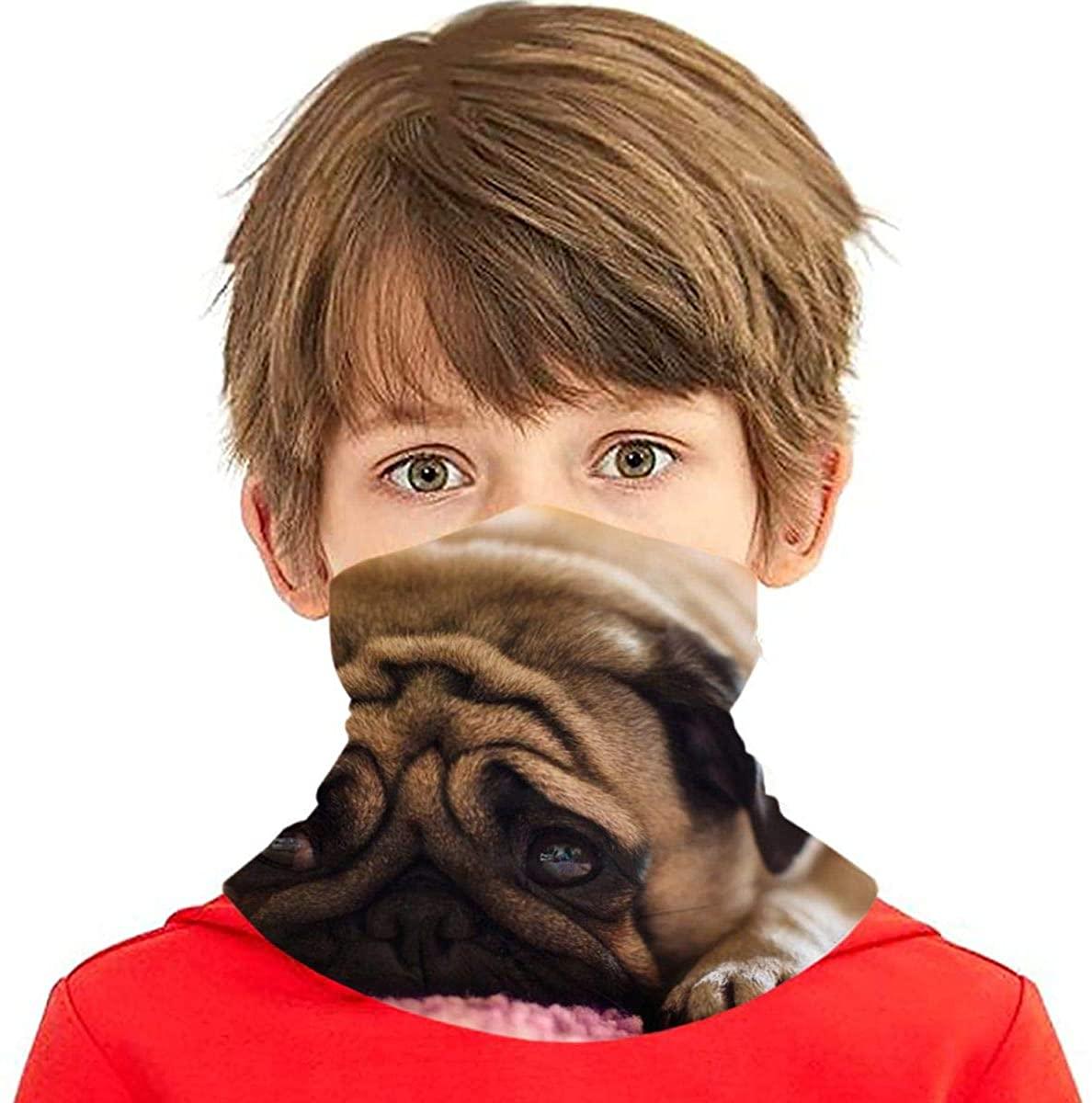 Youth Face Bandanas, Poor Pug Reusable Face Mask Half Face Towel Mouth Cloth Facial Scarf Variety Headscarf