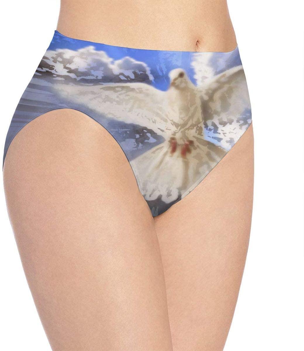 Kjaoi 3D Print Soft Women's Underwear, Dove Painting Fashion Flirty Sexy Lady's Panties Briefs