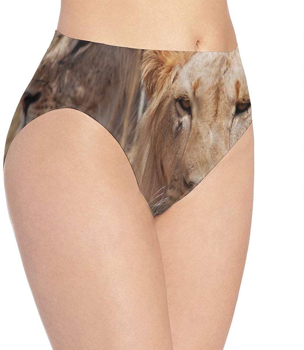 Womens Seamless Underwear Little Unicorn Bikini Panties Stretch Briefs Laser Cut