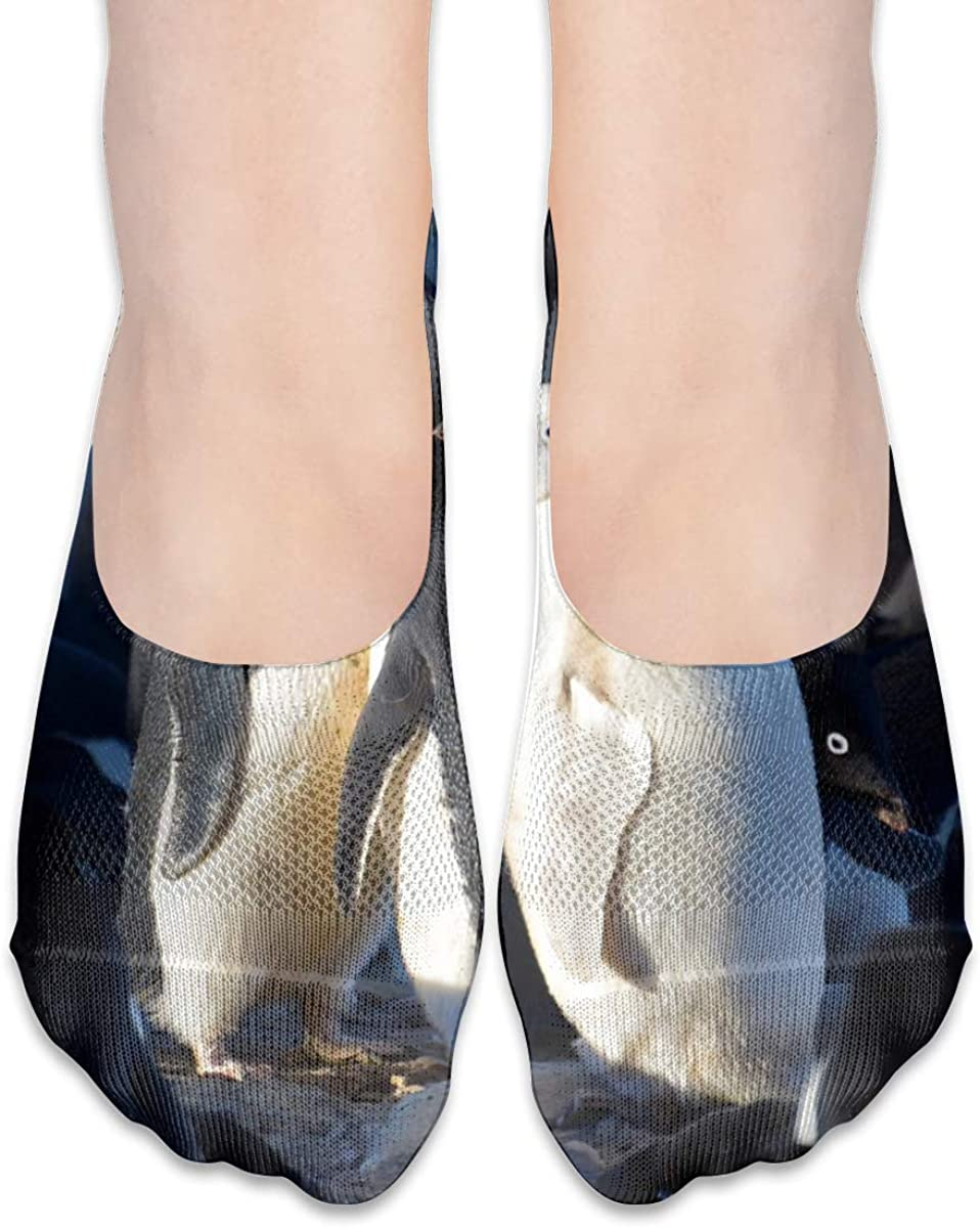 Penguins Texture No Show Socks Women's Low Cut Liner Non Slip Thin Ankle Socks