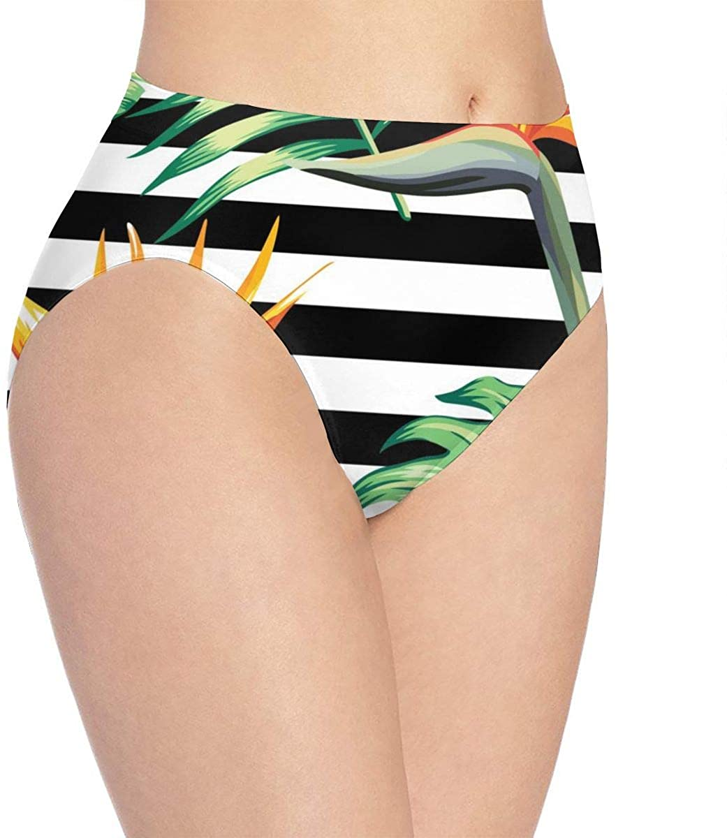 Womens Invisibles Hipster Panty,Palm Banana Leaf Black and White Stripes Panties Breathable Stretchy Low Waist Briefs,for Teens Women