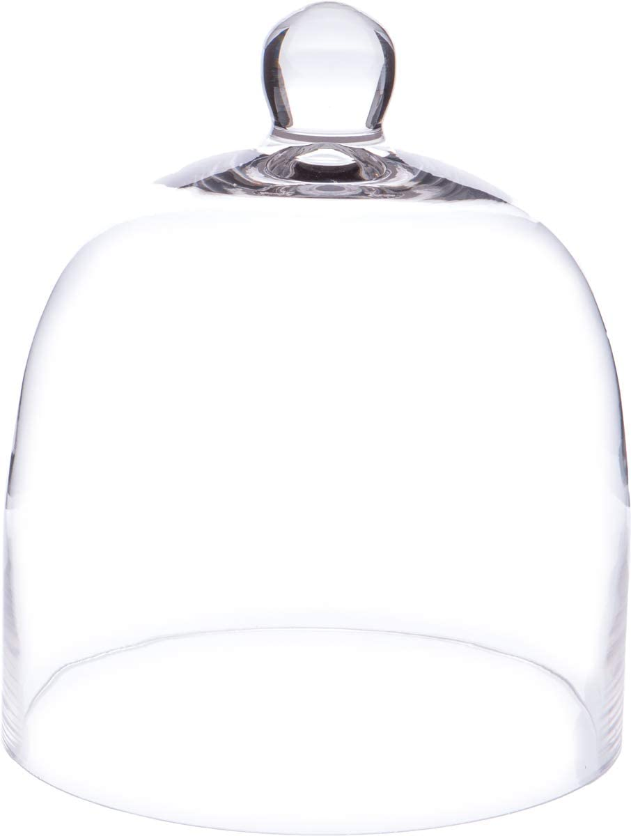 Plymor 8 inch x 9.5 inch Bell Jar Glass Display Dome Cloche (Interior Size 7.75
