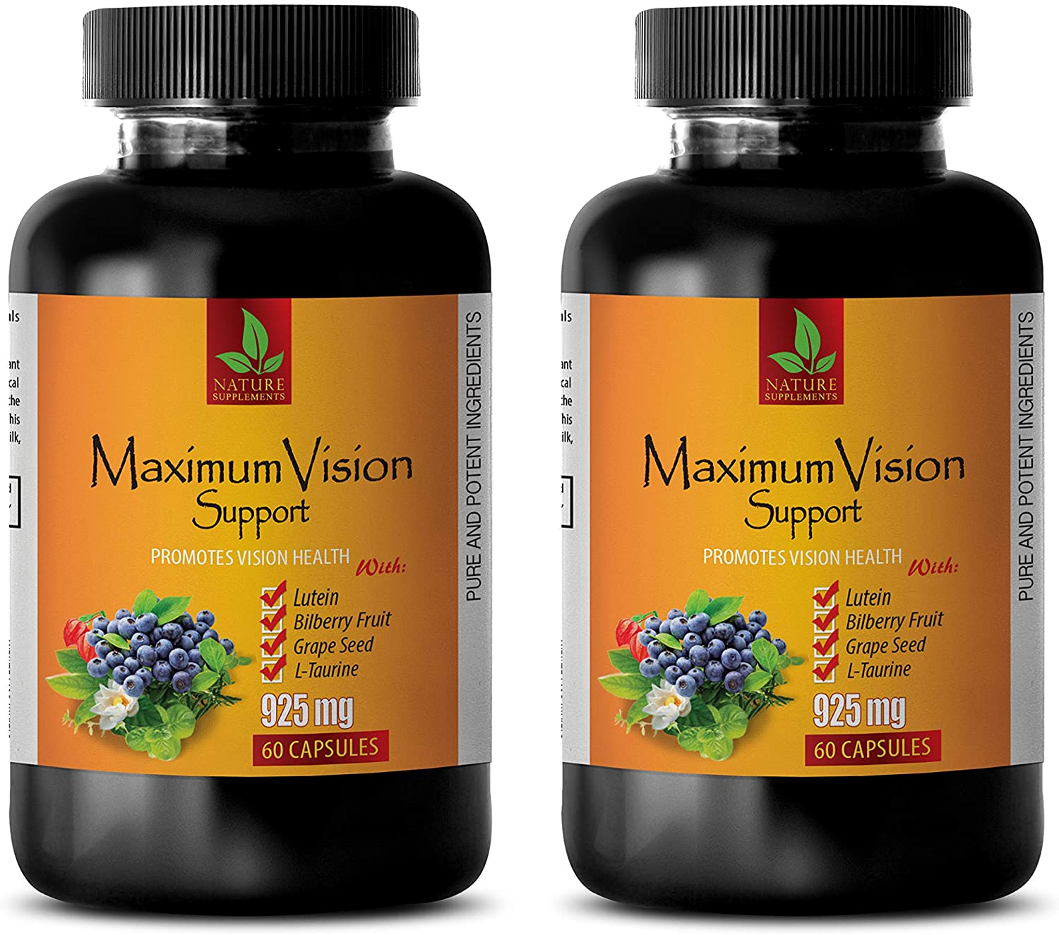 Vision Eye Supplements - Maximum Vision Support - Promotes Vision Health - Bilberry Pills for Eyes - 2 Bottle 120 Capsules