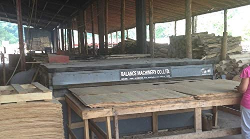 XINGTAI BAILUN Plywood Veneer Dryer N Veneer Drying Machine