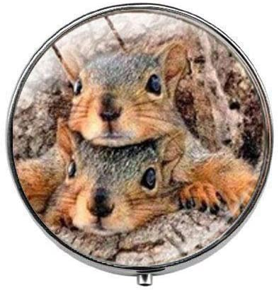 Squirrel Pill Box - Charm Pill Box - Glass Candy Box Forest Animals Squirrel Jewelry Glass Photo Charm Jewelry Birthday Festival Gift Beautiful Gift