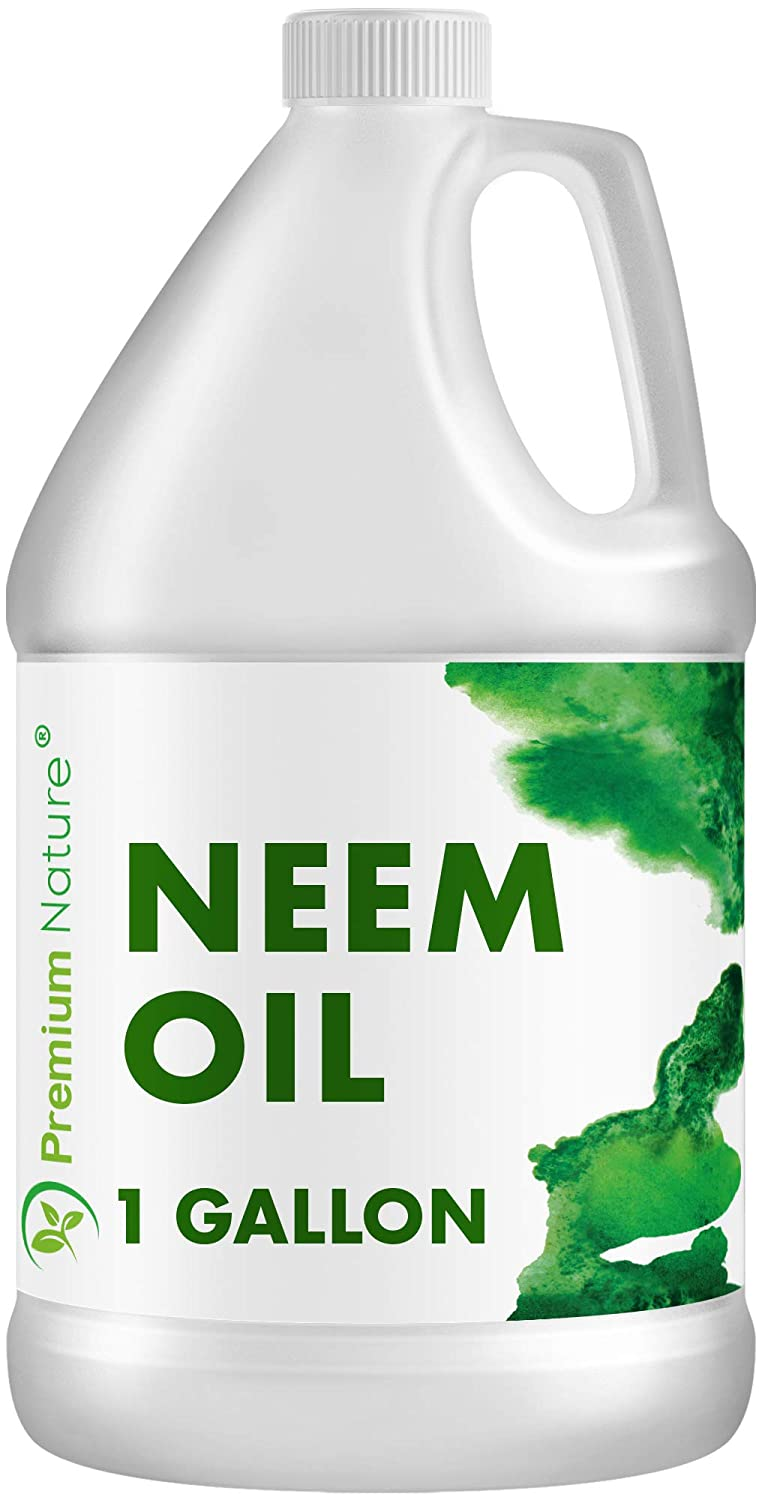 Organic Neem Oil for Hair and Skin- Cold Pressed Neem Oil Pure Hair Oil Neem Oil Plants Neem Oil Extract Essential Nail Oil 1 Gallon