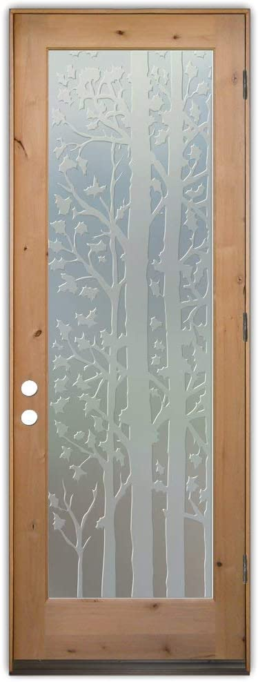 Glass Front Entry Door Sans Soucie Art Glass Forest Trees 3D Private