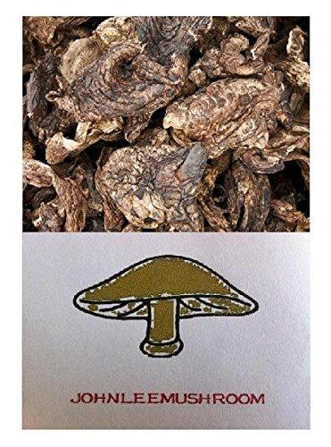 Sarcodon Aspratus Mushroom Dried 715 Gram