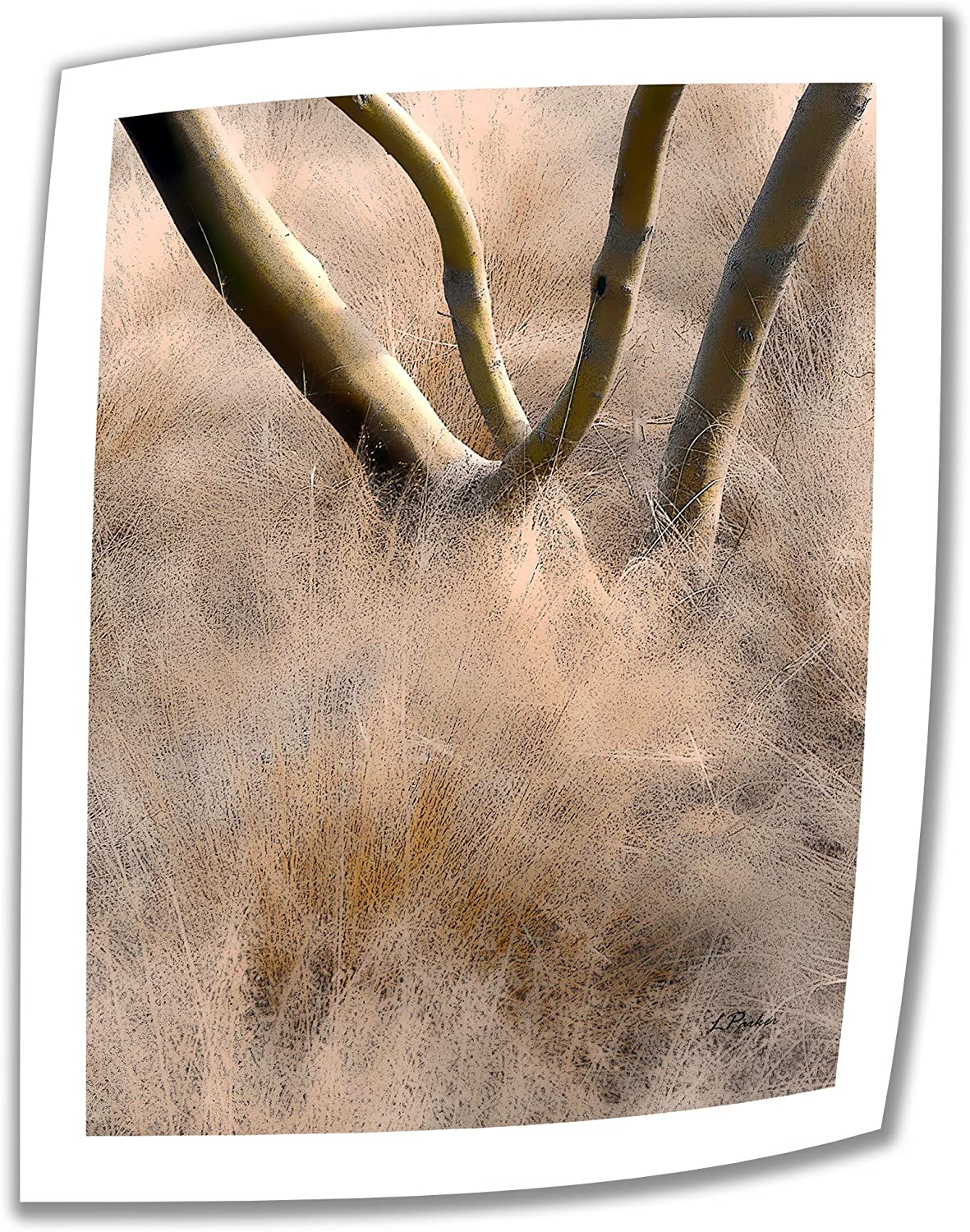 Art Wall Desert Grasses 32 by 24-Inch Unwrapped Canvas Art by Linda Parker with 2-Inch Accent Border