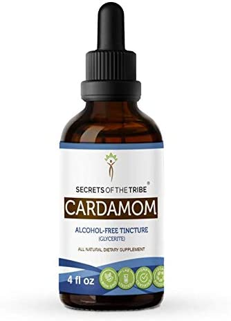 Cardamom Alcohol-Free Liquid Extract, Organic Cardamom (Elettaria cardamomum) Dried Seed Tincture Supplement (4 FL OZ)