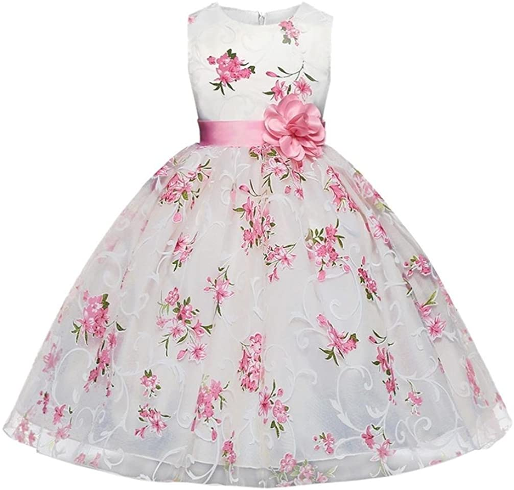 Toddler Baby Girls Clothes Sets for 2-7T,Fashion Lovely Onesies Sleeveless Flower Print Skirt Gown Princess Dress Outfits (5T-6T, Pink)