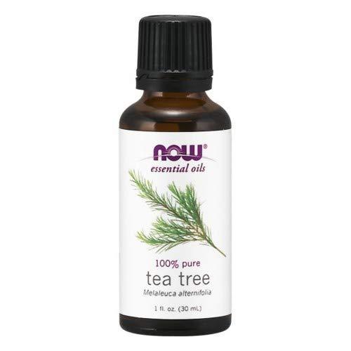 Tea Tree Oil -1 oz Now Foods