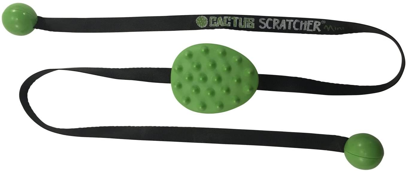 Cactus Back Scratcher Travel Size-   Mini 2 Sides: Aggressive and Soft Spikes   Great Backscratcher for Mobility Impaired   Perfect Gift for Men, Women or Kids (Green)