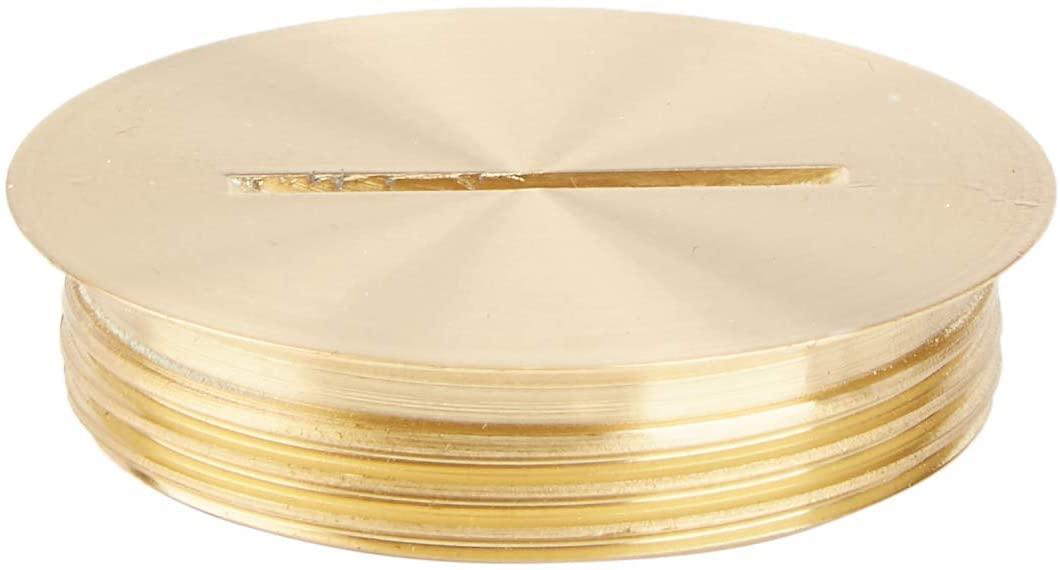 Leviton 5249-CAP, See Image