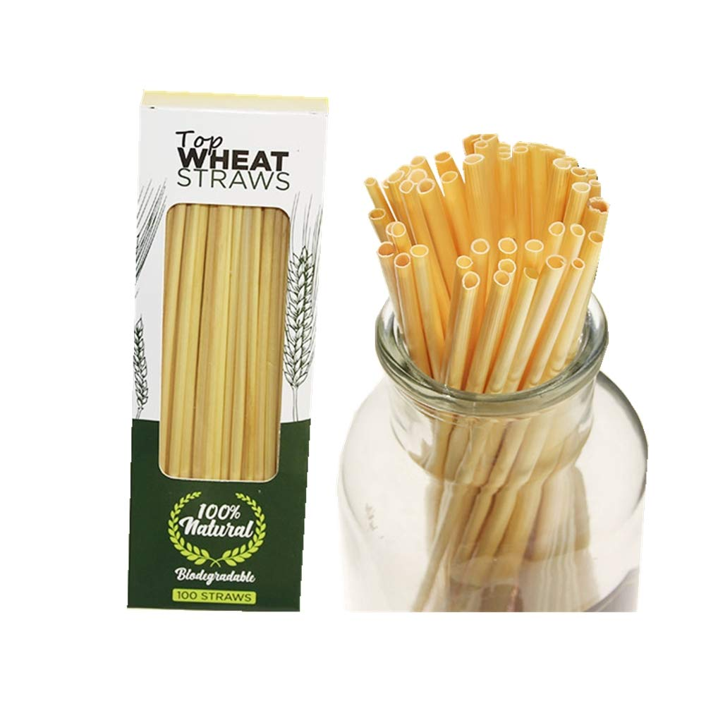 AITIME Disposable Drinking Wheat Straws, All Natural Biodegradable Material, Alternative to Plastic Straws, 100 Count 7.9 Inches