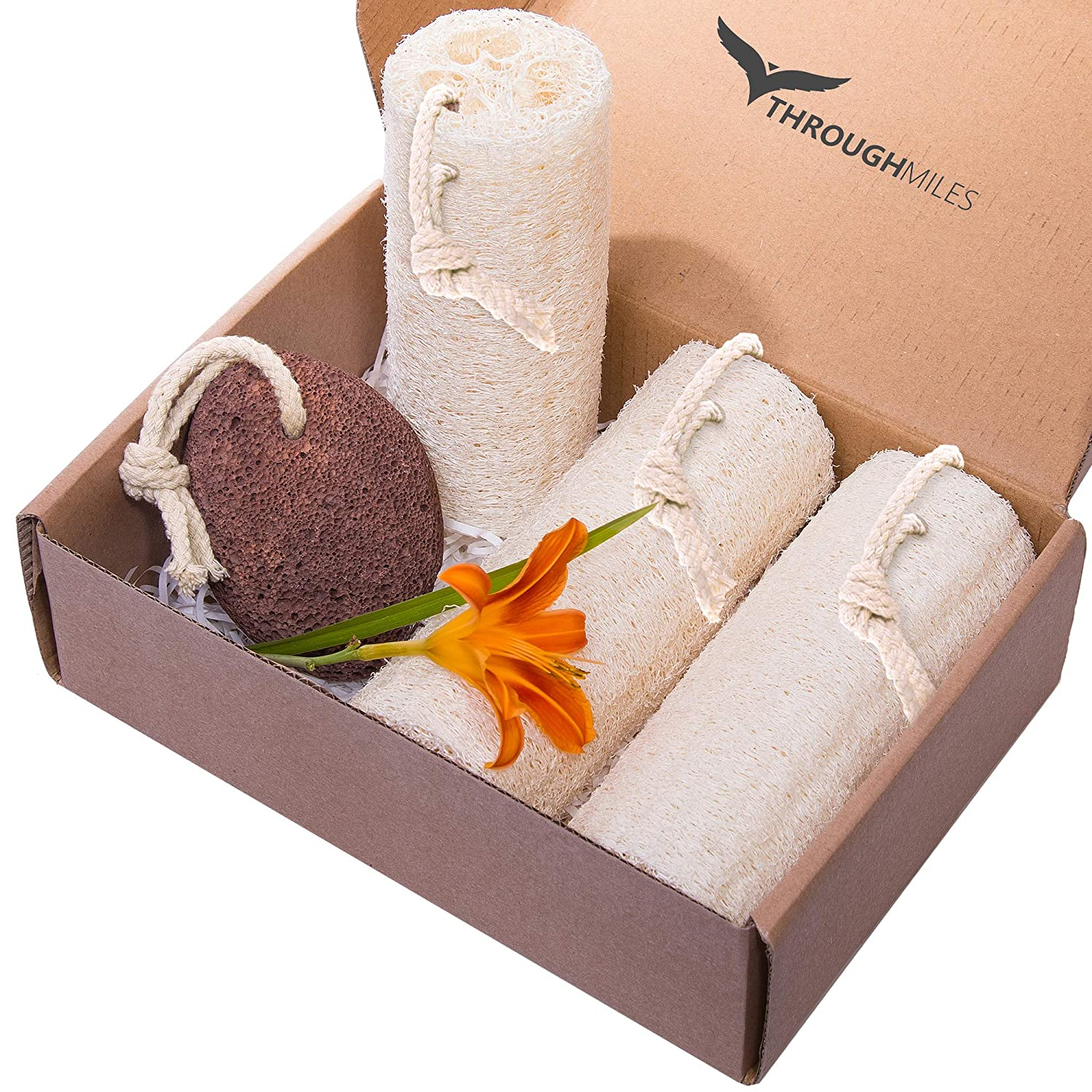 "All Natural Loofah Set of 3 Length 5,8"" With Lava Pumice Stone"