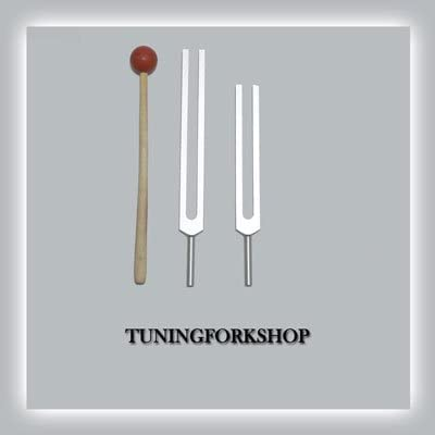 TFS Tuningforkshop 2 Pc Cellulite Reduction Tuning Fork with Mallet+Pouch+Fast Shipping