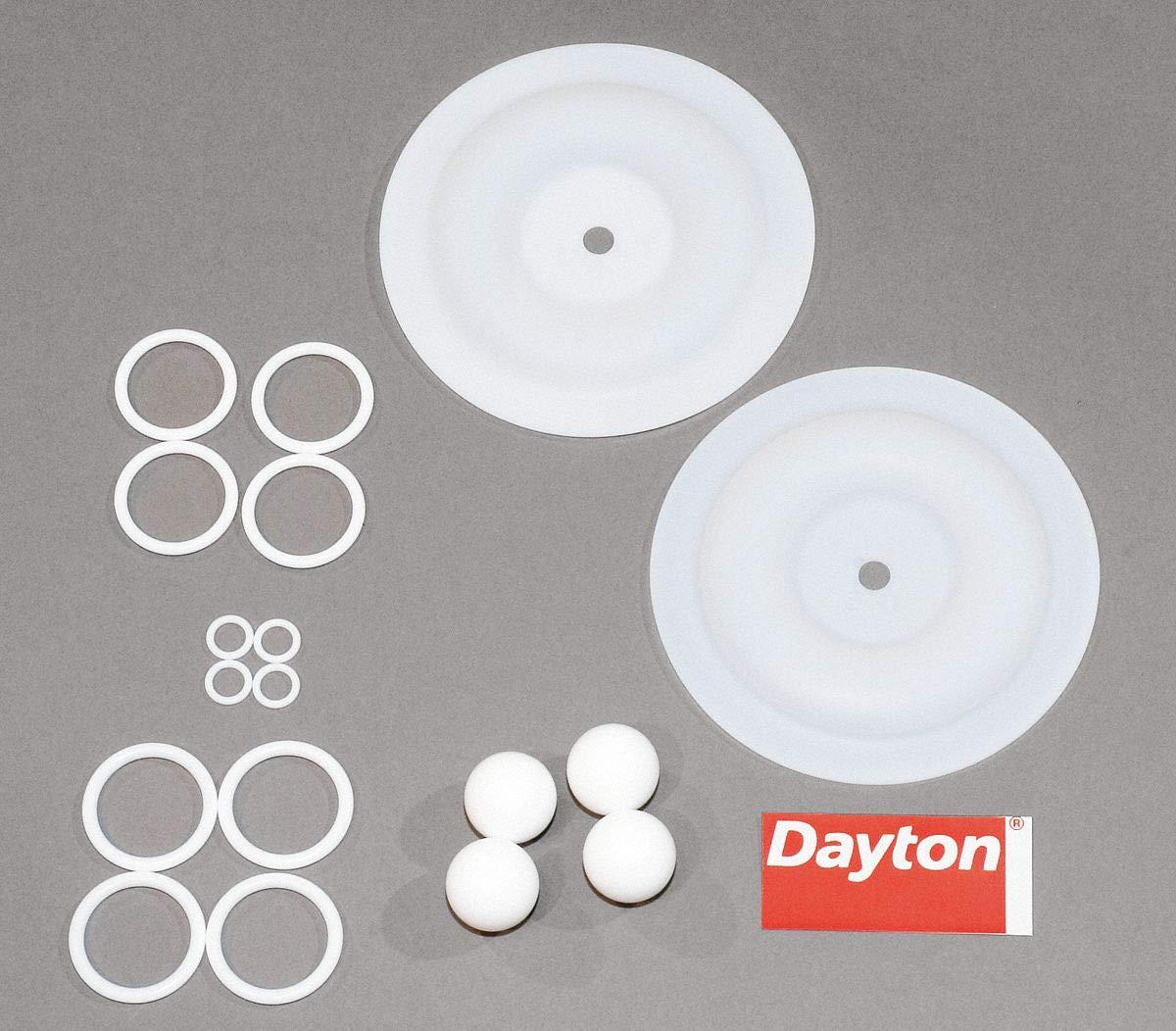Dayton 6PY72 Pump Repair Kit, Fluid
