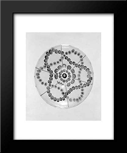 Baccarat Glasshouse - 20x24 Framed Art by Museum Prints Titled: Paperweight