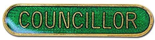 1000 Flags Councillor Pin Badge in Green Enamel with Rounded Edge