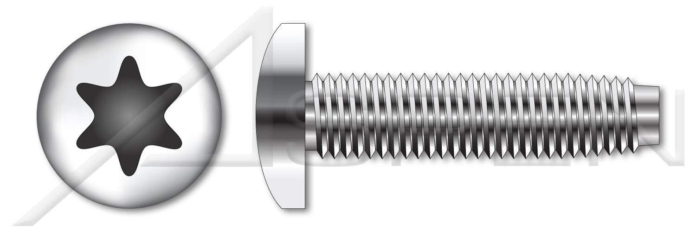 (2000 pcs) M4-0.7 X 6mm, DIN 7500 Type CE, Metric, Thread Rolling Screws, Pan 6-Lobe Torx(r) Drive, A2 Stainless Steel