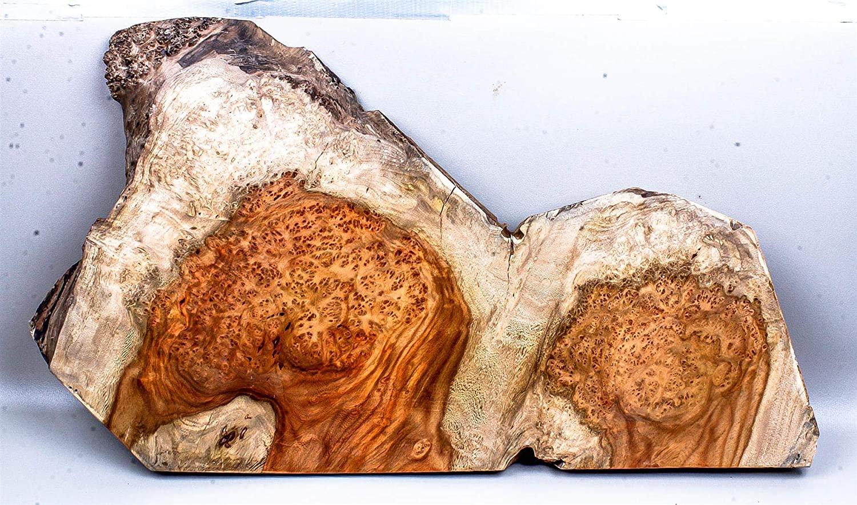 Live Edge Amboyna Burl Exotic Wood Turning, Resawing Slab AB5350