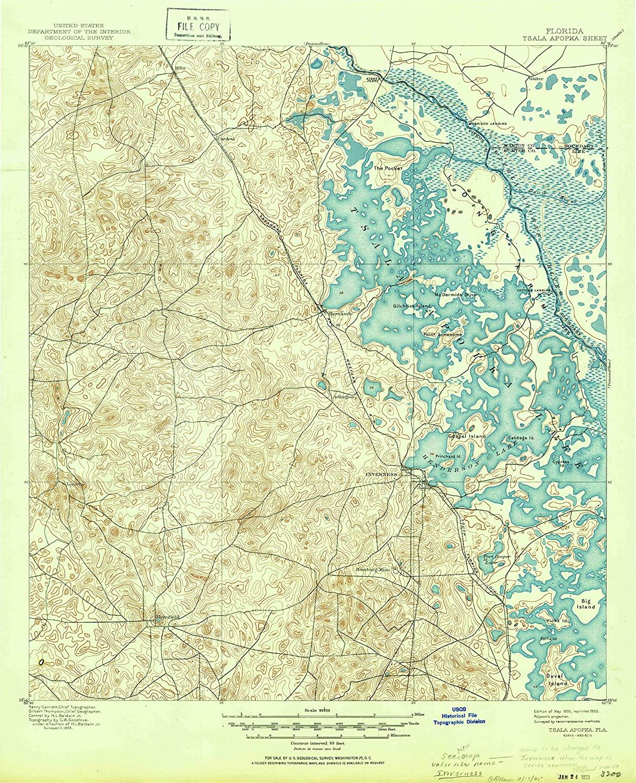 Map Print - Tsala Apopka, Florida (1895), 1:62500 Scale - 24
