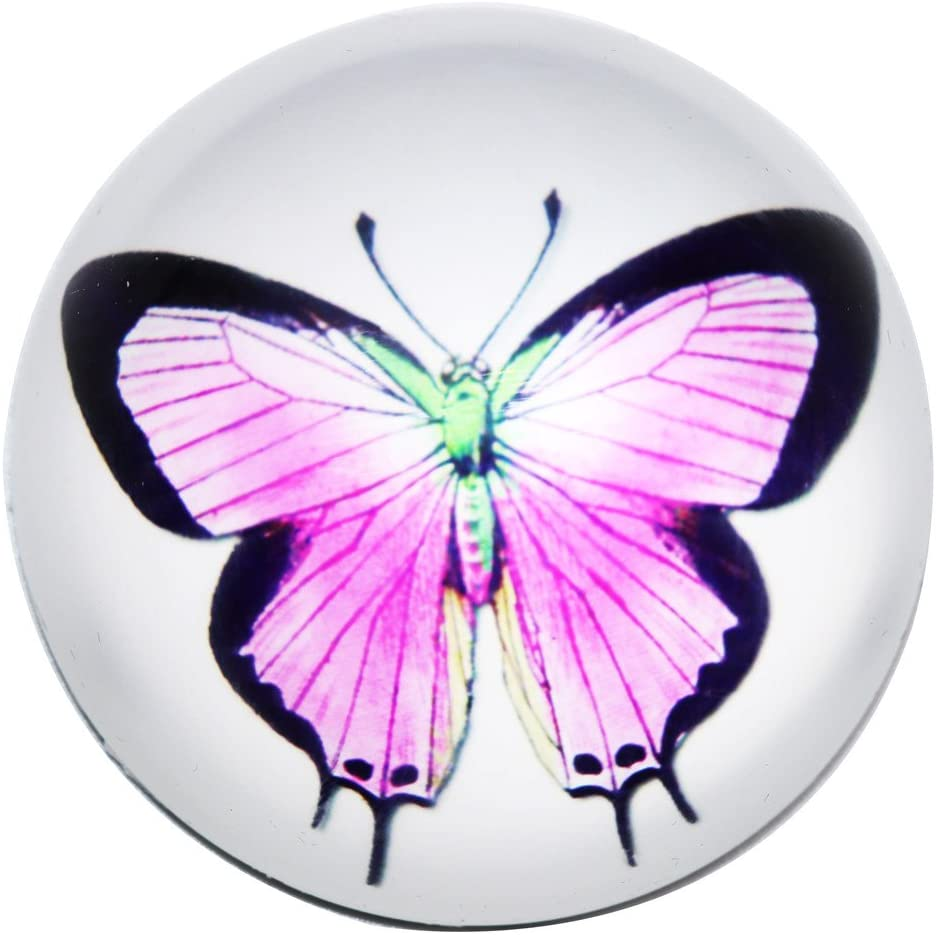 Waltz&F Crystal butterfly Paperweight Galss Globe Hemisphere Home Office Table Decoration 2.36