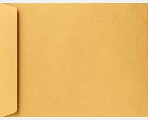 9 1/2 x 12 1/2 Open End Envelopes (Pack of 50000)