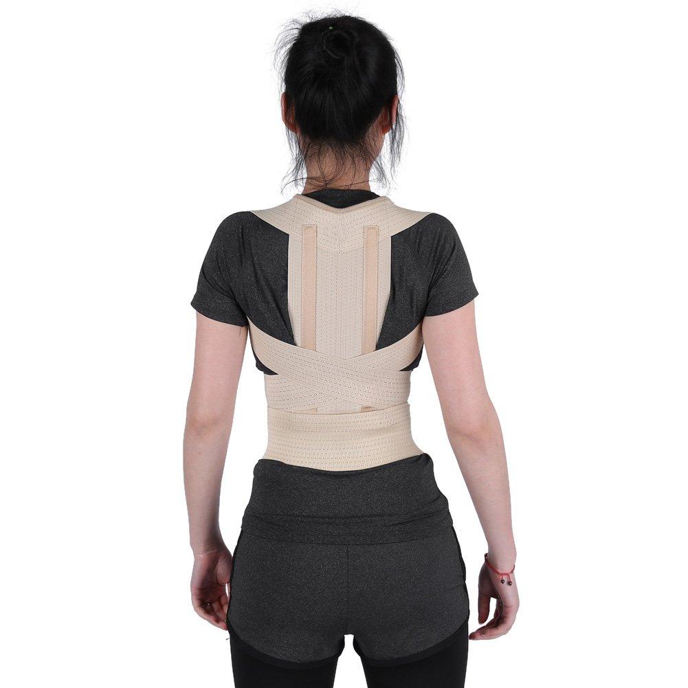 Posture Corrector For Men And Women,Adult Students Adjustable Back Shoulder Waist Support Band Posture Correction Belt 4 Sizes (M)