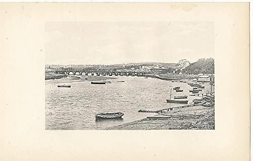 Panorama of Barnstaple England c.1895 antique photogravure view