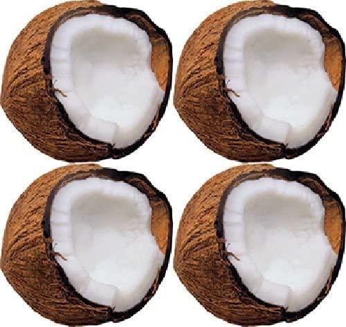 Trend Enterprises Inc Monkey Mischief Coconuts Mini Accents