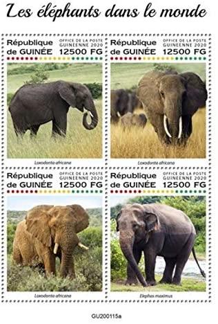 Guinea - 2020 Elephants in The World - 4 Stamp Sheet - GU200115a