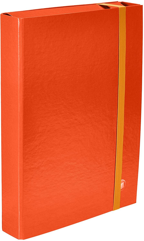 Arca 8129AR Document Folder, Pack of 12, Spine 6, Orange