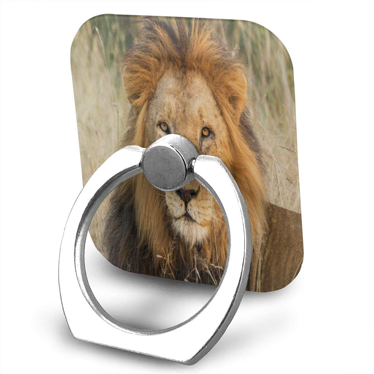 SLHFPX Universal Phone Ring Holder Male Lion Relaxing in Grass with Eye Contact Adjustable 360°Rotation Square Finger Grip Loop Cell Phone Stand for Phone X/6/6s/7/8/8/10/11 Plus Smartphone Android