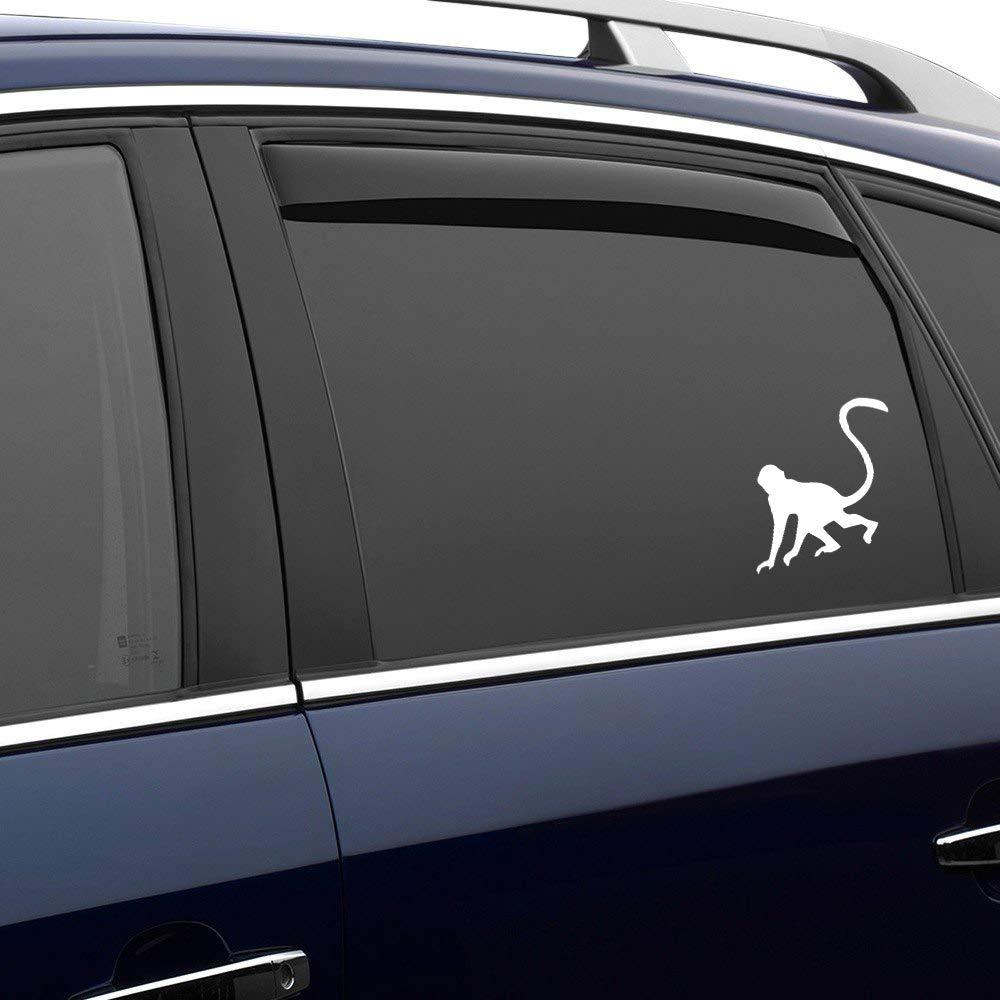 Monkey auto Sticker,Vinyl Car Decal,Decor for Window,Bumper,Laptop,Walls,Computer,Tumbler,Mug,Cup,Phone,Truck,Car Accessories