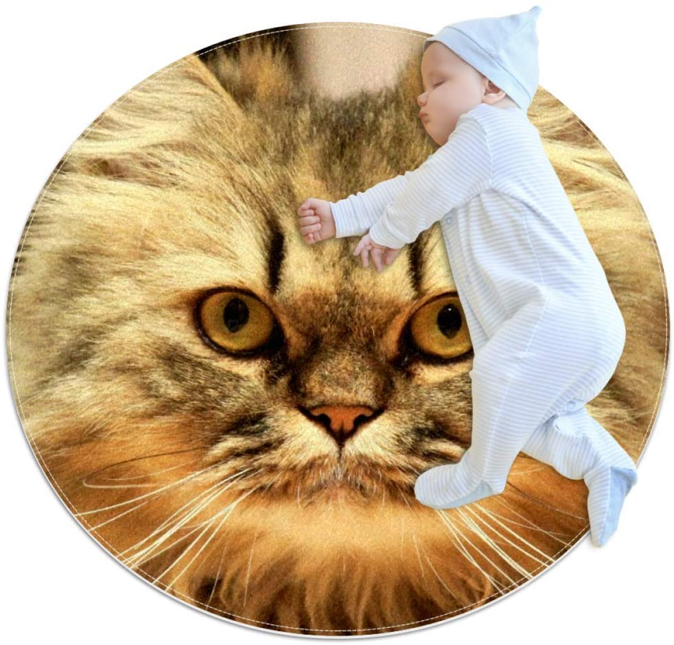 Stupid Persian Cat Baby Crawling Mat Home Decorative Carpet Soft and Washable Pad Non-Slip for Kid's Toddler Infants Room 39.4x39.4IN