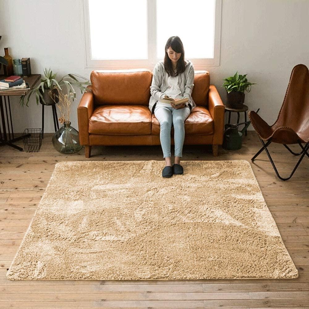 Zzalo Carpet Bedroom Living Room Study Office Bedside Blanket Non-Slip Simple Fashion Soft Carpet Coffee Table Platform Bay Window Deep Gray (Size : 80160cm)