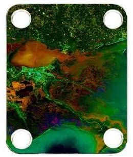 Custom Graphical Guitar Neck Plate Neckplate Mississippi Delta